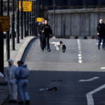 Police forensics investigators and police dog handlers work on London Bridge after an attack left 6 people dead and dozens injured in London